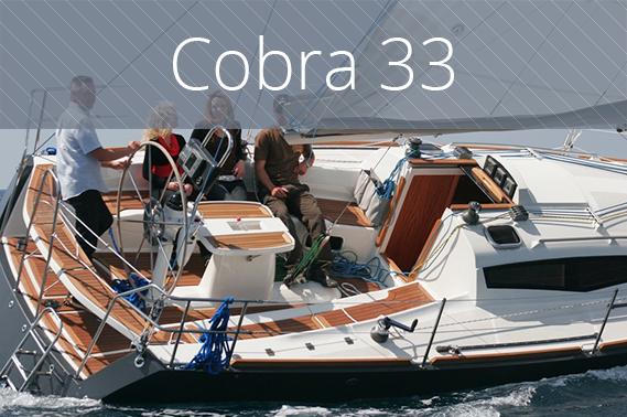 Cobra 33